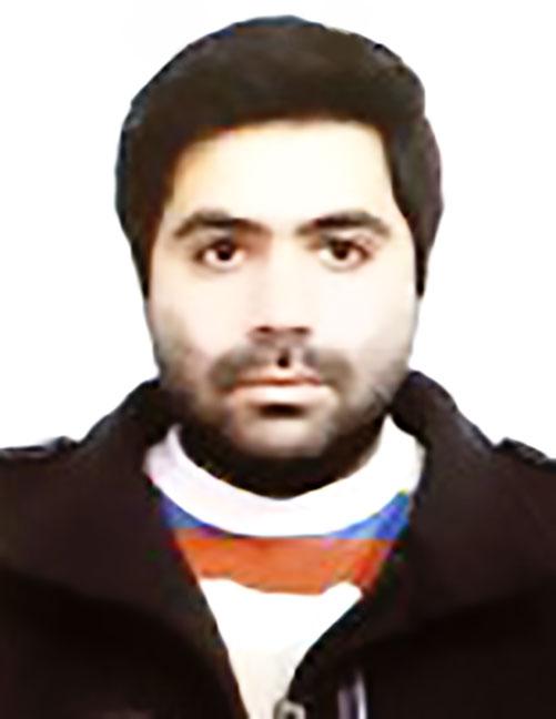 حامد سید محمدی